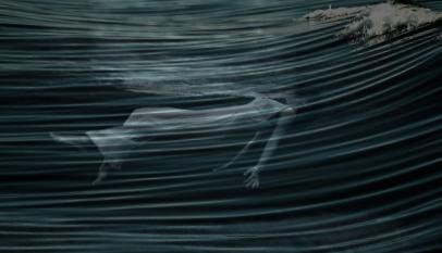foto como el mar GRAN_videoclips_Medi_Terraza